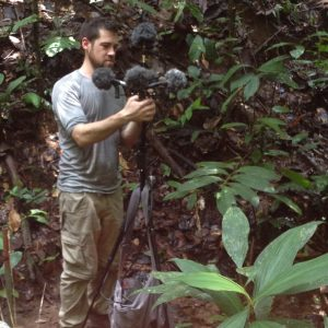 Sound Recording Amazon Forest