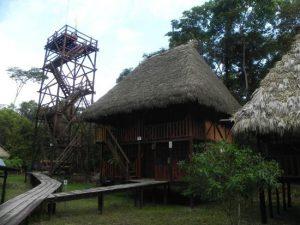 Tower_Guacamayo