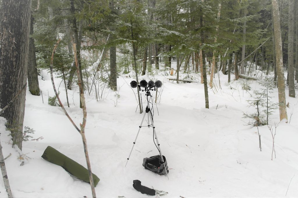 Recording Winter Soundscape