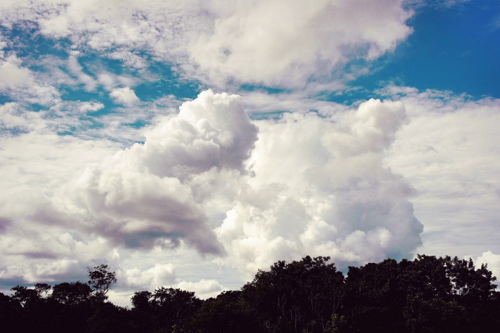 Wild Nature Sky