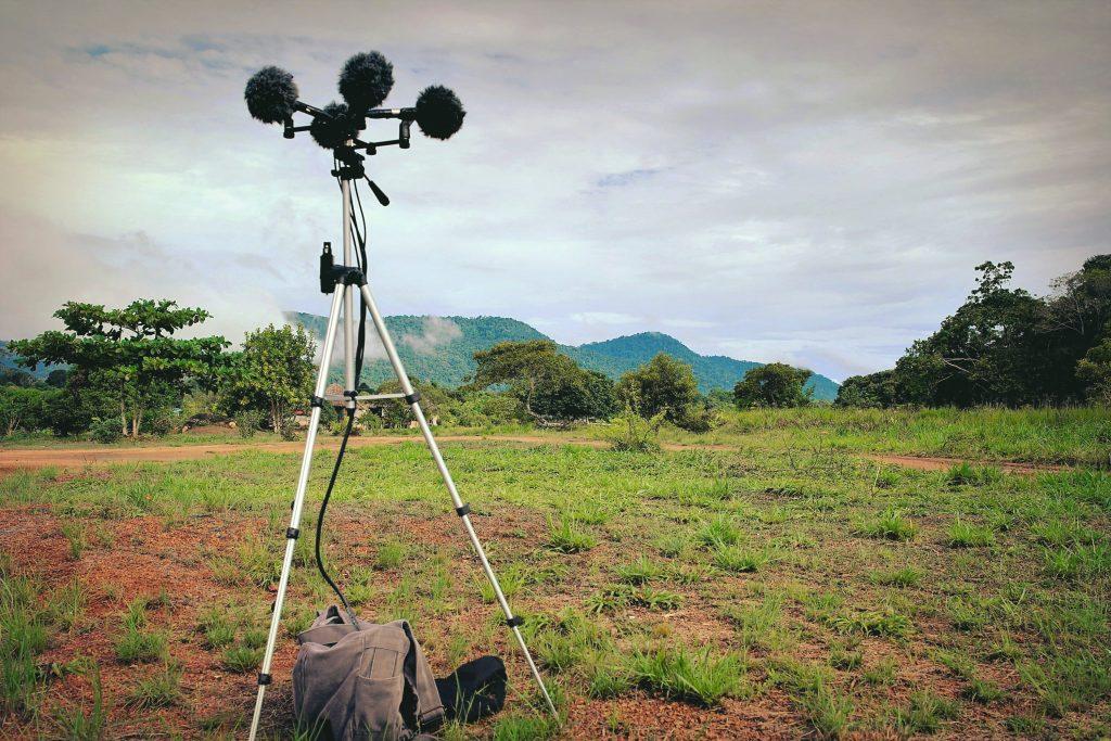 Recording Wild Soundscapes