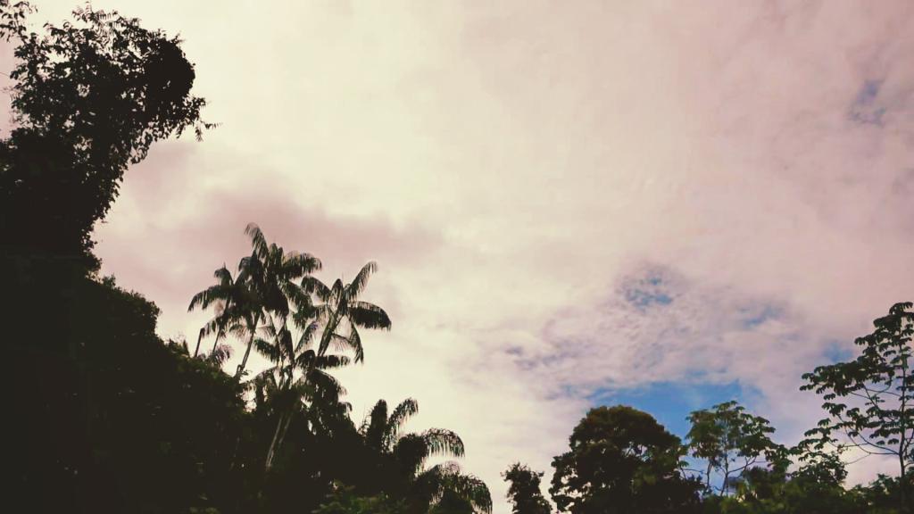 Rupununi Skyline