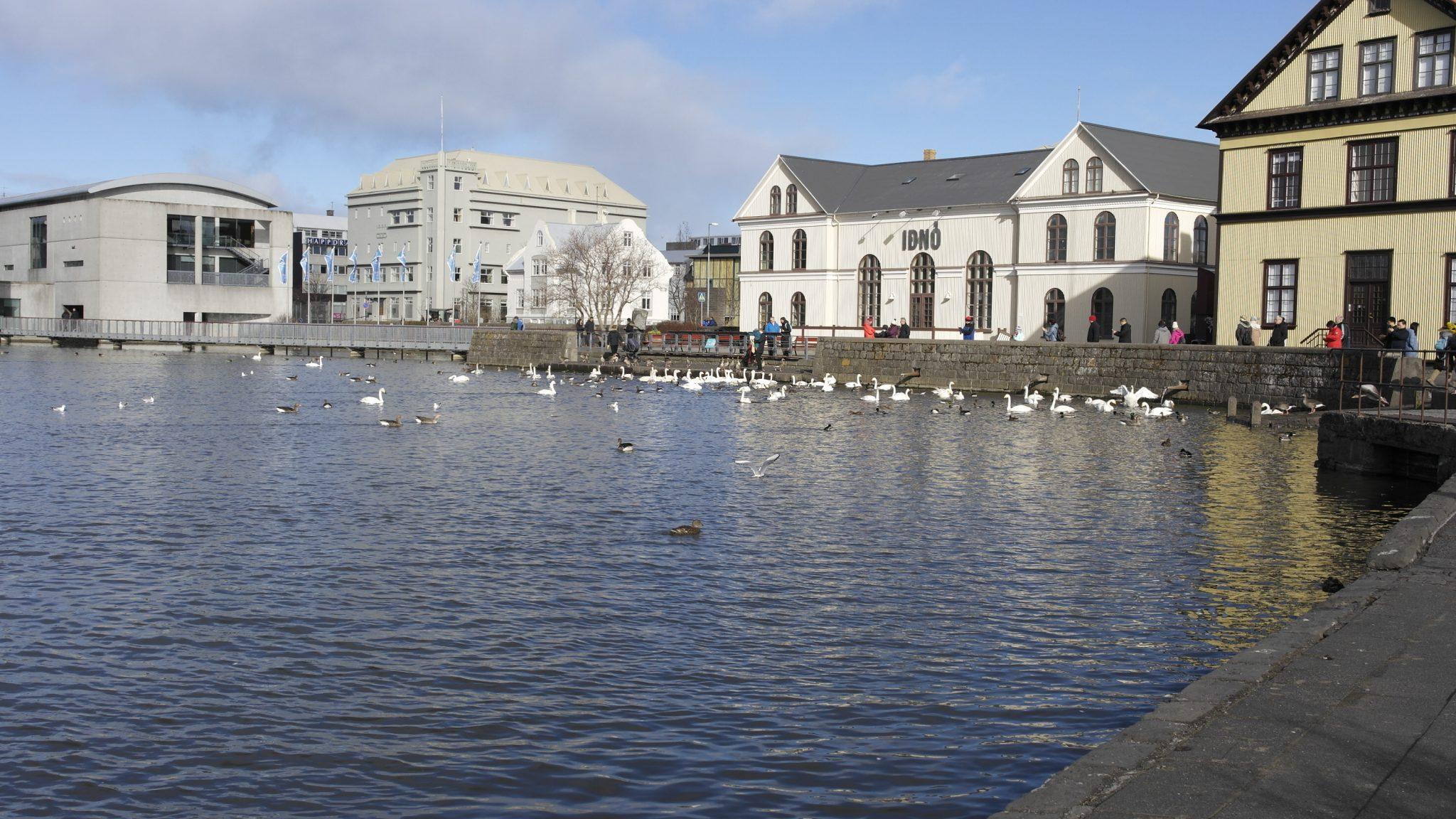 Reykjavik Recording